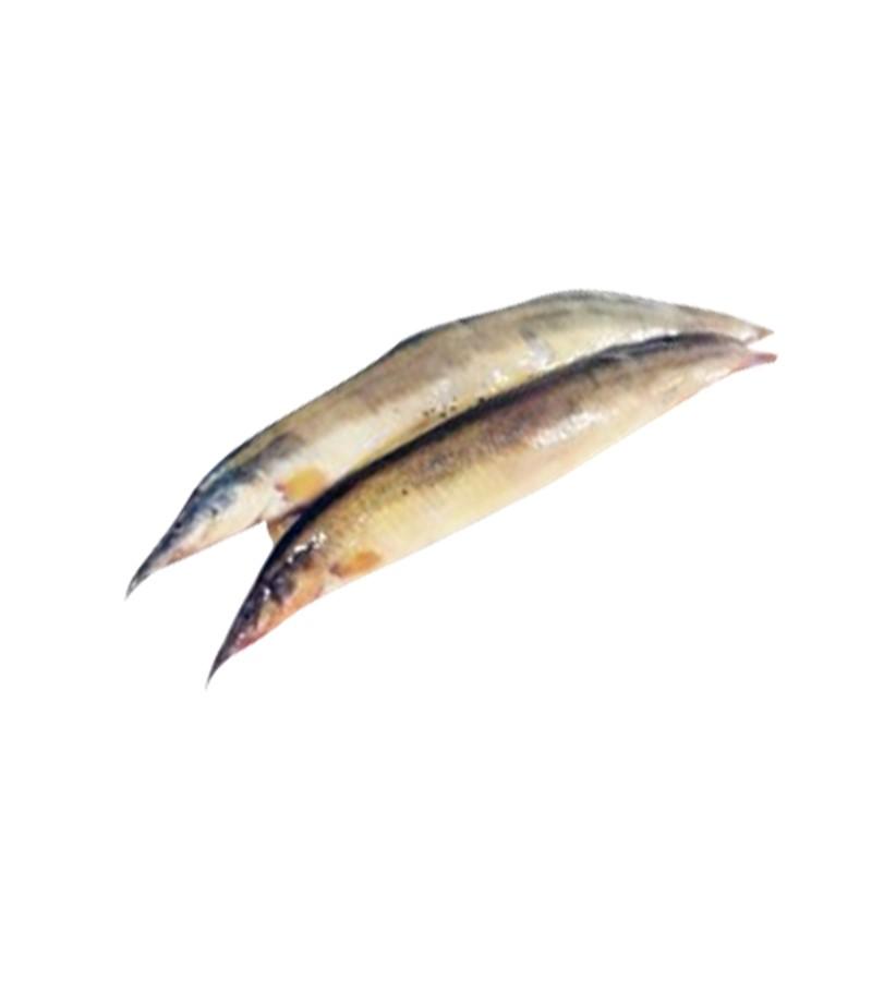 starbaim fish